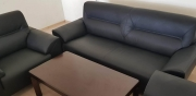 Furniture B103 leather